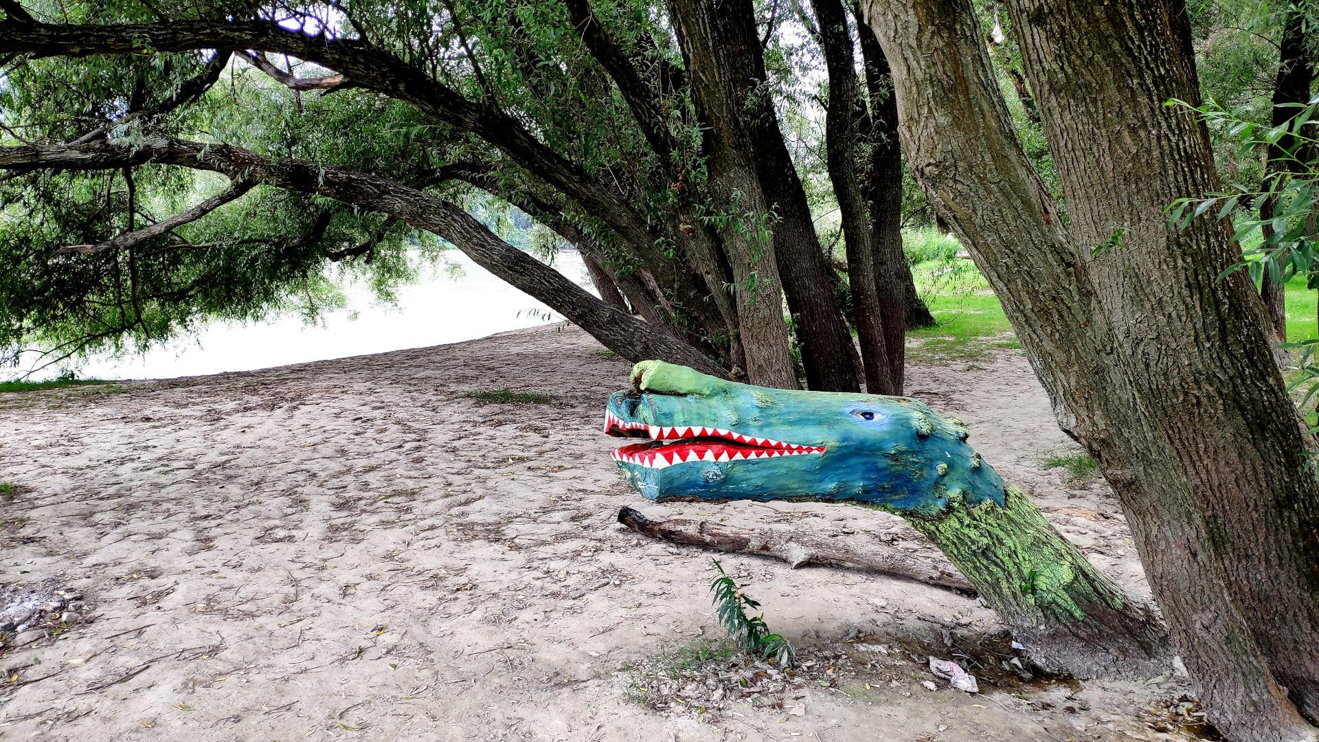 krokodil fatörzsből