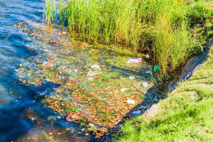 műanyagok a Tiszában